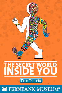 The Secret World Inside You - Fernbank Museum